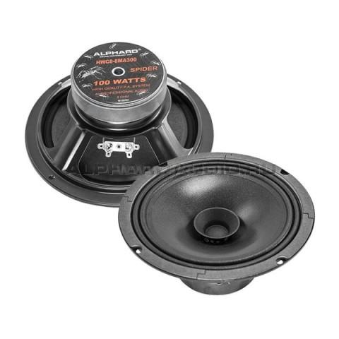 Эстрадная акустика Alphard HWC4-12MA300
